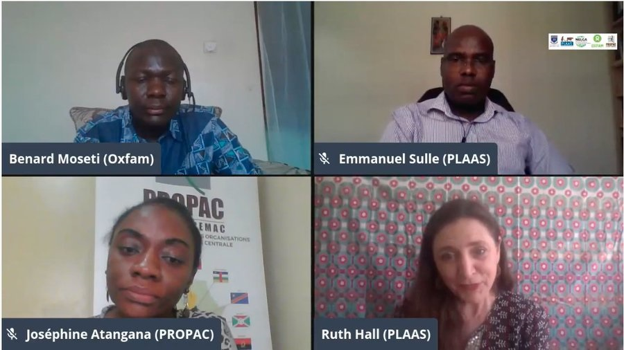 PLAAS and NELGA Digital Seminar Series Shares Lessons and Limitations around Women Land Rights in Africa